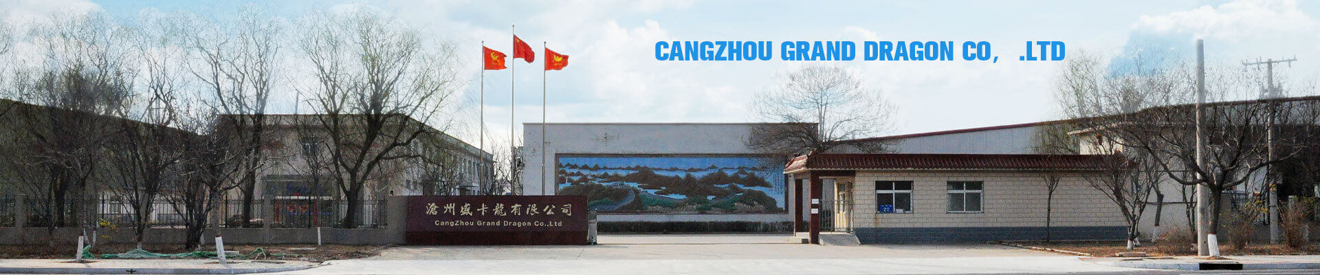 Cangzhou Grand Dragon Trading Co., Ltd.